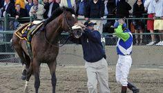 Ruffian, Barbaro, Homeboykris: Is This Horse Racing's Legacy?