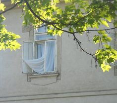Fenster. Landscape Pictures, Paisajes, Windows
