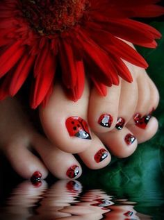 Ladybug toes - when I get a granddaughter I'm so taking her to the nail salon for this! Too cute!!