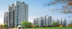 Mascot Soho Group is the fastest growing real estate builder in Noida Extension. This group has launched a new residential society Mascot Soho Misty Heights offering scintillating amenities.