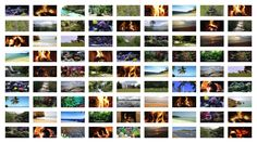 License Videos for a Waiting Room, Hotel, Airline, Hospital etc..