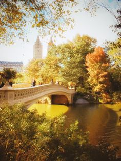 New York City in autumn. Bow Bridge, Central Park.