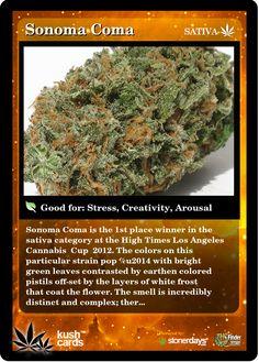 Sonoma Coma   Repined By 5280mosli.com   Organic Cannabis College   Top Shelf Marijuana   High Quality Shatter
