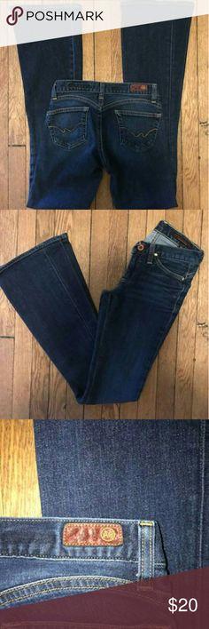Adriano Goldschmied jeans Adriano Goldschmied flared jeans size 24 Adriano Goldschmied Jeans Flare & Wide Leg