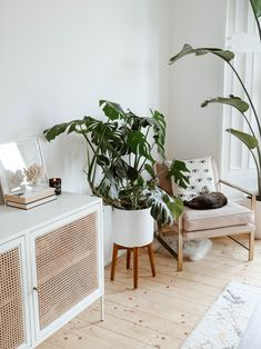 love this planter Natural Furniture, Bamboo Furniture, New Furniture, Furniture Design, Rattan Side Table, Furniture Collection, White Walls, Decor Interior Design, Decoration
