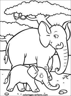 coloriages-elephants