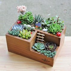 Multifunctional Wooden Desktop Office Supply Caddy and Succulent Planter Best Picture For Garden Planters bench For Your Taste You are looking for somet Succulent Pots, Cacti And Succulents, Planting Succulents, Planting Flowers, Indoor Succulent Garden, Cactus Planters, Mini Cactus Garden, Cactus Terrarium, Succulent Ideas