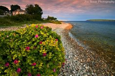 Macinac Island.....I spent a couple of wonderful summer holidays right here.  If you get the chance GO.