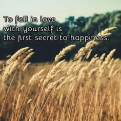 #theimagequote #quote #quotes #love #happiness