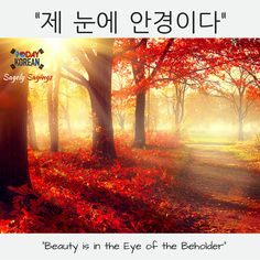 "Korean Proverbs: ""제 눈에 안경이다"" = ""Beauty is in the eye of the beholder"". #korean_proverb #korean_language #study_korean"