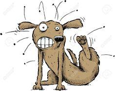 Al perro mas flaco se le pegan las pulgas