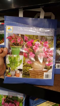 My Costco was offering Flower Garden kits for $19.99 and Bareroot trees for $14.99 (Roland Heights CA) I'm not sure if the flower kits are a good deal #gardening #garden #DIY #home #flowers #roses #nature #landscaping #horticulture