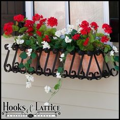 I love the look of European window box cages.