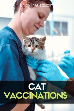 Recent years have brought much discussion among veterinarians, breeders, and cat owners on the value, safety, and necessity of some vaccines. Does my cat really need to be vaccinated every year? Are vaccines more harmful than helpful? Cat vaccinations are an important part of maintaining your cat's health and well-being, but there is also a lot of misinformation out there. Here we let you know all about it... #enjoythepets #cats #catsvaccinations #catspets #pets #catvaccines