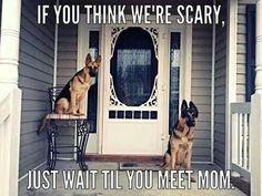Beware of owner!
