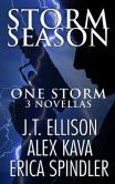 Storm Season - Erica Spindler is one of my FAV authors! New Orleans girl with awesome stories! Pick up one of her books! Books To Read, My Books, Speed Reading, Library Card, No One Loves Me, Great Books, Bestselling Author, Nonfiction, Thriller