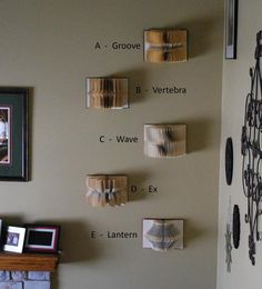 Altered Books Folded Book Wall Sculptures