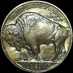 1919 Buffalo Nickel Rare Lustrous Choice Gem BU  and Album Toned Free Shipping