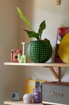 Ol' Dirty Planters UO Exclusive Basketball Planter | Urban Outfitters
