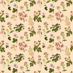 Small botanical print, Cinderella's Garden fabric by melinda_wolf_designs on Spoonflower - custom fabric
