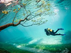 This article is about Scuba diving at Green Lake in Austria which is only temporarily submerged and is a meadown belowthe water