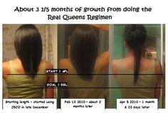 Real Queens Regimen/Greenhouse Effect - Real Queens