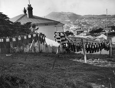 Rugby jerseys drying on washing lines, Wellington, ca Reference Number: Photographer: William Hall Raine Silver gelatin print Photographic Archive, Alexander Turnbull Library Find out more about this image from the Alexander Turnbull Library. Clothes Line, Washing Clothes, Richie Mccaw, Kiwiana, All Blacks, Black N White Images, Shades Of Green, 50 Shades, Vintage Photography