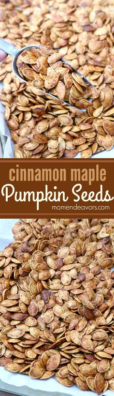 Roasted+cinnamon+maple+pumpkin+seeds+-+a+delicious+&+healthy+fall+snack!+