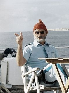 Bill Murray in The Life Aquatic with Steve Zissou by Wes Anderson, 2004 Bill Murray, Wes Anderson Films, Mode Costume, Hollywood, Photos Of The Week, Famous Faces, Actors & Actresses, Beautiful People, Gorgeous Men