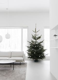 Our tree is up and the Christmas vibes and ringing out! I hope you are getting into the Christmas spirit What do you do to get into the spirit of Christmas? Christmas Tree Box Stand, Red And Gold Christmas Tree, Natural Christmas, Xmas Tree, Christmas Tree Decorations, Christmas Lights, Christmas Wreaths, Holiday Decor, Christmas Ornaments