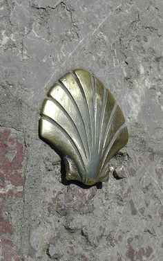 St. James's shell, a symbol of the route, on a wall in León, Spain