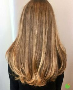 49 Celebrity Hairstyles for Long Hair That We Can't Stop Staring At 49 Promi-Frisuren für langes Haa Blonde Hair Looks, Blonde Hair With Highlights, Brown Blonde Hair, Natural Looking Highlights, Sandy Blonde Hair, Blonde Honey, Color Highlights, Hair Inspo, Hair Inspiration
