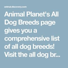 Animal Planet's All Dog Breeds page gives you a comprehensive list of all dog breeds! Visit the all dog breeds page to learn more about your dog breed.