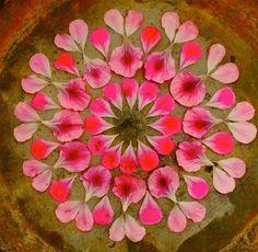 Danmala Mandalas: Elegant, Intricate Circles Made From Nature
