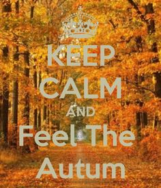 KEEP CALM AND FEEL THE AUTUMN*...(...*so come on now, please get out of here, gross & sweaty, nasty hot air--it's almost mid-September, already!!!...ha-ha:)