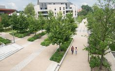 Eco-cœur de ville de Notre-Dame-de-Gravenchon - La Compagnie du Paysage Planting Plan, Photos Du, Dame, Sidewalk, Plants, Landscape, City, Side Walkway, Walkway