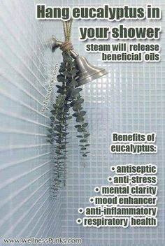 Hang eucalyptus in your shower for a calming effect...I'm curious to try this.