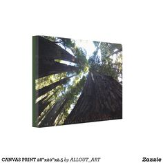 Decorate your walls with Photo Prints canvas prints from Zazzle! Choose from thousands of great wrapped canvas to beautify your home or office. Photo Canvas, Canvas Art Prints, Wrapped Canvas, Tapestry, Decor, Hanging Tapestry, Tapestries, Decoration, Decorating