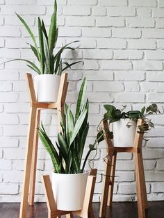 6 Glorious Cool Tips: Natural Home Decor Modern Apartment Therapy simple natural home decor window.Natural Home Decor Ideas Outdoor Spaces natural home decor ideas decoration.Natural Home Decor Rustic Islands. Small Plants, Cool Plants, Indoor Plants, Ikea Plants, White Plants, Indoor Flower Pots, Indoor Cactus, Leafy Plants, Inside Plants