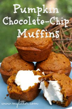 Pumpkin Chocolate Chip Muffins http://mylitter.com/recipes/pumpkin-chocolate-chip-muffins/