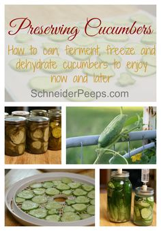 Canning pickles is not the only way to preserve cucumbers. You can also ferment, dehydrate and even freeze them.