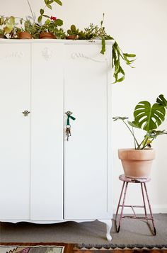 Wardrobe makeover with plants
