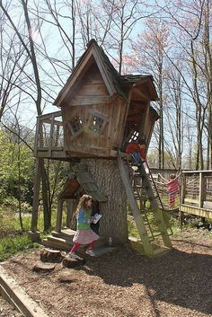 Great use of an old tree stump!