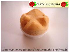 Arte e Cucina...Pasta Madre: Come mantenere in vita il lievito madre