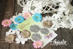 Primula with stitching Flower Paper, Stitching, Embroidery, Costura, Needlepoint, Stitch, Sew, Sewing Projects, Needlework