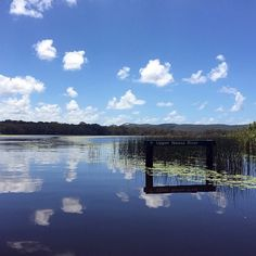 Picture perfect reflections along the Noosa Everglades.
