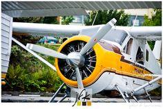 Yellow Float Plane.... http://www.browsetheramp.com/
