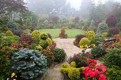 Summer mist in the upper garden (July 21) | Flickr - Photo Sharing!