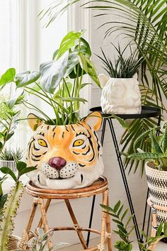 20 Amazing Tiger Prints that You Need Right Now is part of Bohemian home DIY - 20 Amazing Tiger Prints that You Need Right Now Get all the latest UltraChic Tiger Print Selections in Home Decor and Fashion Jungle Glam Up Any Space Cerámica Ideas, Head Planters, Bathroom Plants, Bohemian Interior, Tiger Print, Potted Plants, Plant Pots, Wicker, Rattan