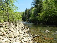 Bed Creek